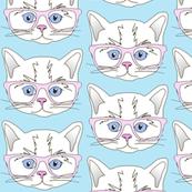 Hipster Kitten Pastel Baby Blue