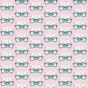 Hipster Kitten Pastel Baby Pink Small