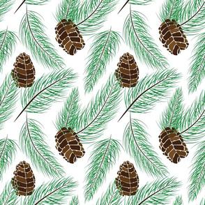 Winter Pine Needles