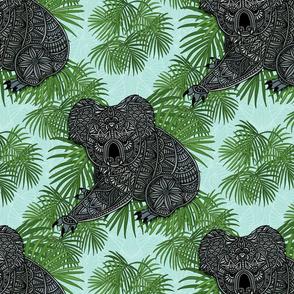 Tropical Koala