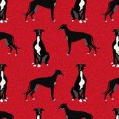 Rgreyhound-b-a-dog_shop_thumb