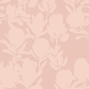 protea peach uni