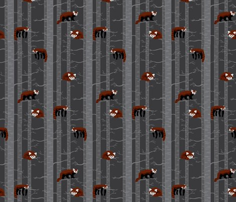 Rrrrrrrrrred_pandas_in_the_forest_shop_preview
