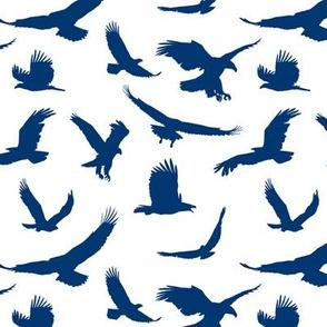 Blue Eagles // Large