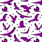 Purple Eagle Dots // Large