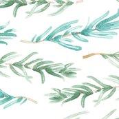 Rwatercolor-rosemary-pattern-seamless-13_shop_thumb