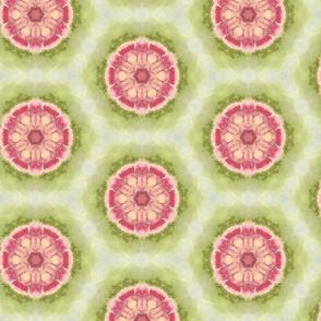 Hydrangea and Honeycomb