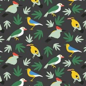 Topus Birds Black