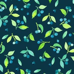 Seamless Berry fields grand on dark blue