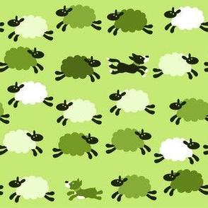 ChasingTheSheep-Green