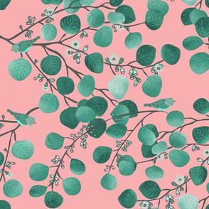 EUCALYPTUS spring pink