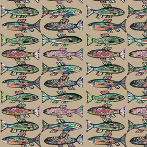 Rainbow Trout beige