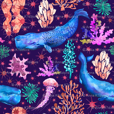 Whales and coral reef