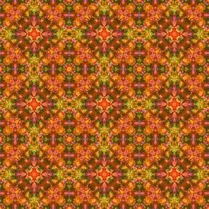 Warm Kaleidoscope Tie Dye