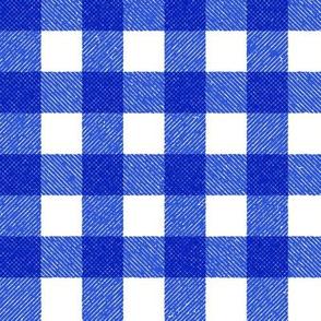 blue textured gingham