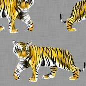 Rrtiger-tiger-yellow-orange-on-grey_shop_thumb