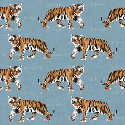 Tiger Walk - Larger Scale on Blue