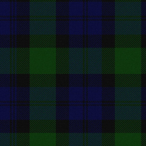 Blackwatch Tartan ~ Parc-Aux-Cerfs and Trafalgar ~ Textured