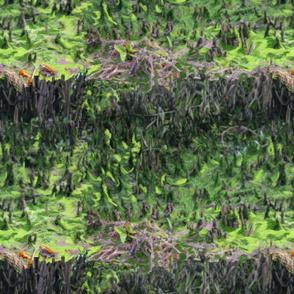 everglades pattern
