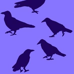 corvidsilhouettes