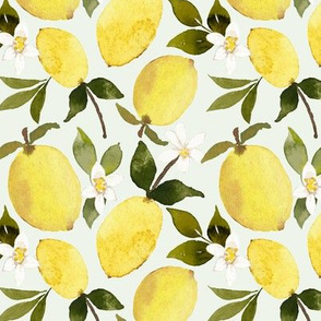 Lemons on mint
