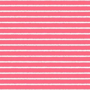 1382_Melon with White Stripes