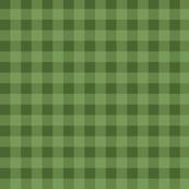 Green Gingham