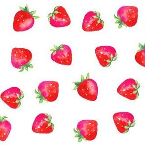 Large Plump Strawberries