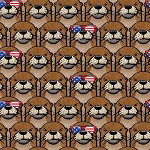 patriotic otter