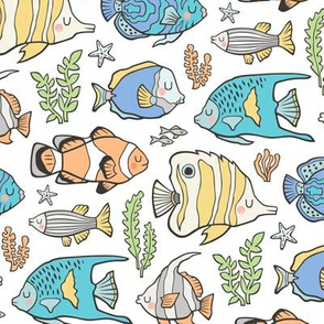 Tropical Fish on White