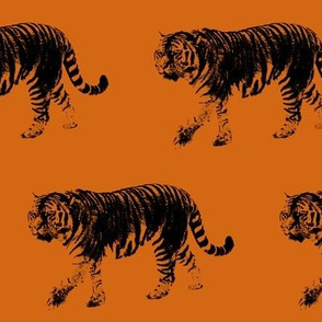 Tiger Prowl - Orange // Large