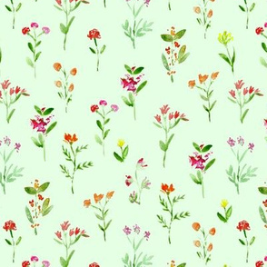 Meadow flowers on green  || watercolor floral pattern