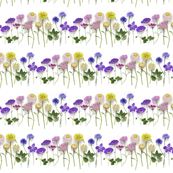 working file summer flowers double stripe 150dpi