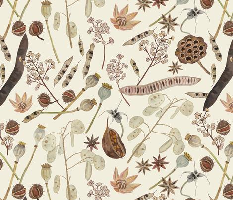 Seed Pods fabric by dasbrooklyn on Spoonflower - custom fabric