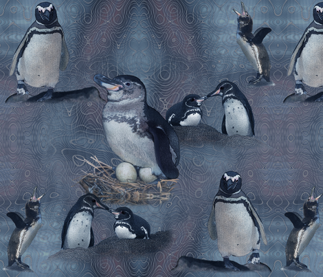 Galapagos penguin fabric by snarets on Spoonflower - custom fabric