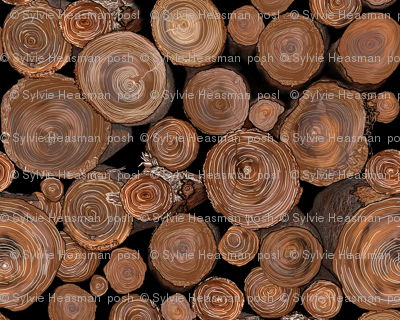 LOGS FOR THE FIRE PLACE