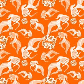 Goldfish in Orange