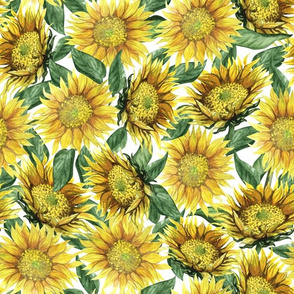 Sunflowers (medium scale)