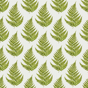 Watercolor Fern Pattern on Gray Background