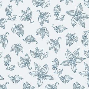 Botanic Sketch WB-ch-ch