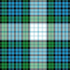 "Campbell 42nd regimental dress tartan variant, 12"""