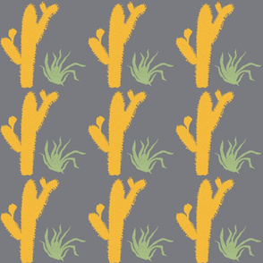 Yucatan cactus & agave, by Susanne Mason