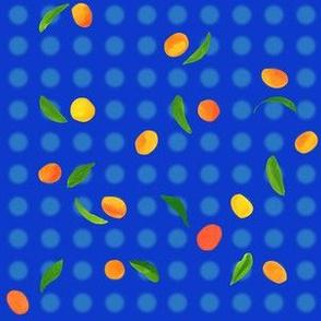 polka quats