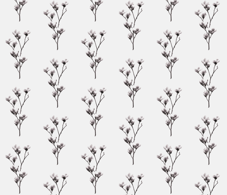 Small Magnolias fabric by ampersand_designs on Spoonflower - custom fabric