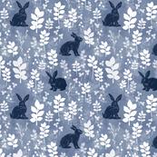 Wild rabbit field