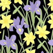 Iris and daffodils at night (large)