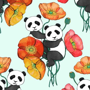 Poppies and Pandas on Mint