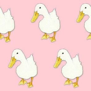 Duck Kiss on pale pink