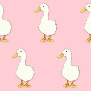 Duck Cool on pale pink