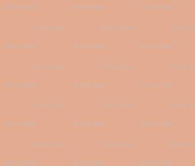 coral apricot terracotta neutral peach orange salmon